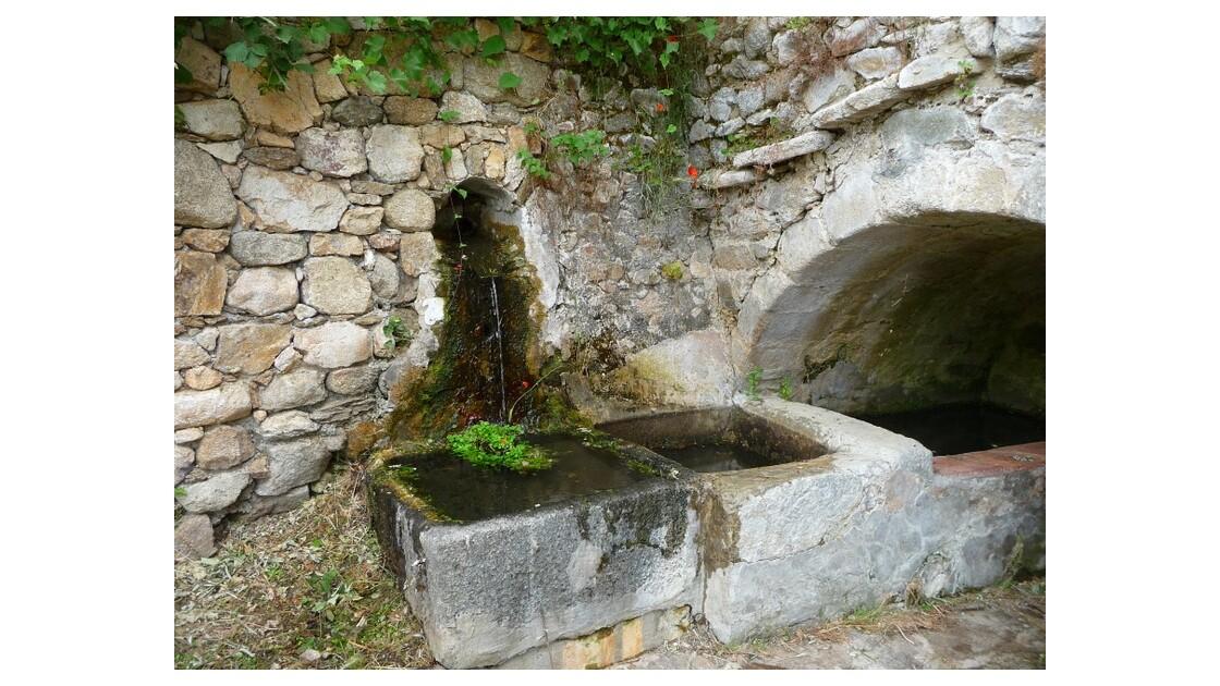 bassin 271.JPG