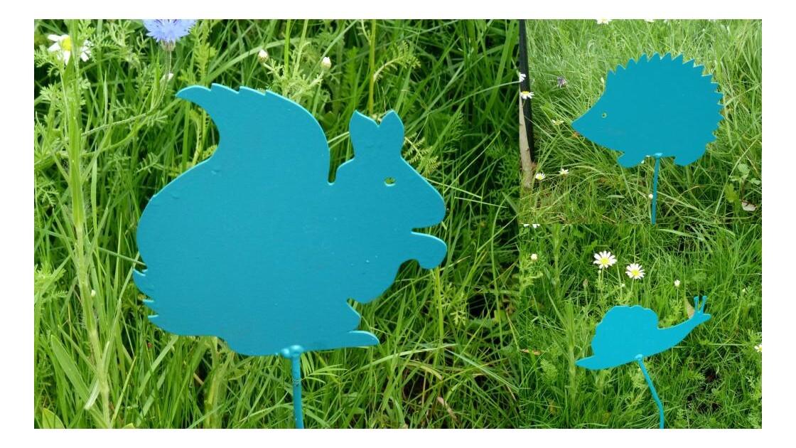 Animaux bleus