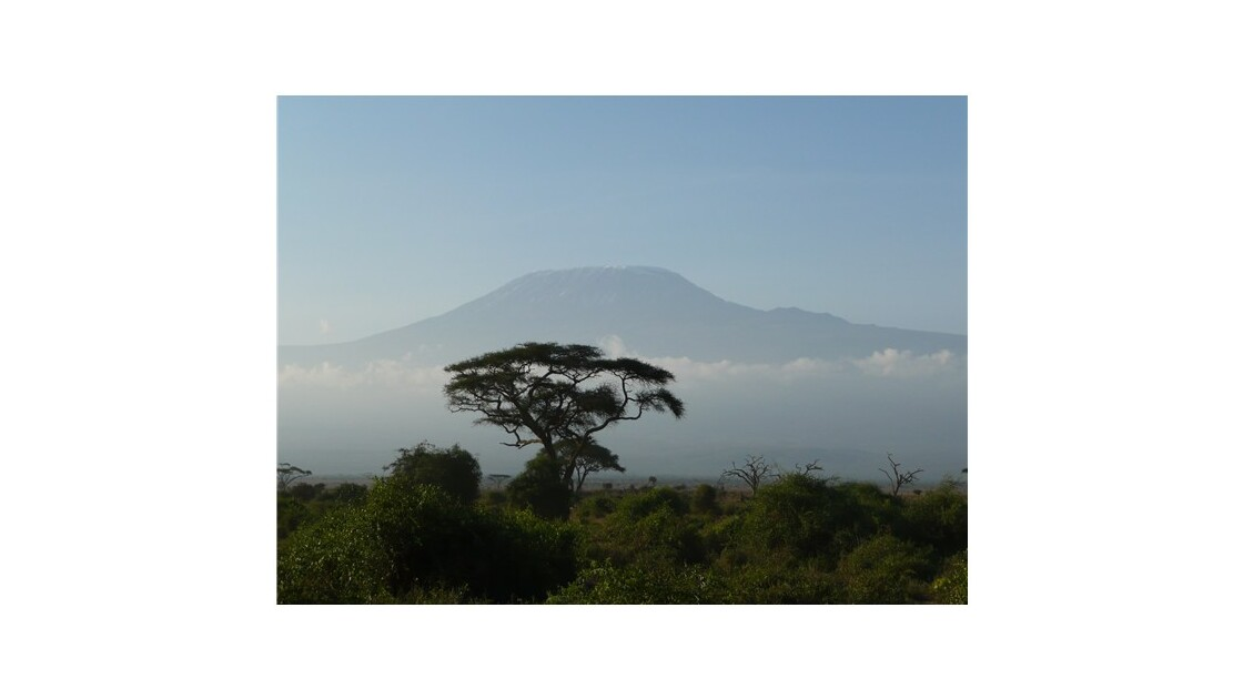 Le Kilimanjaro