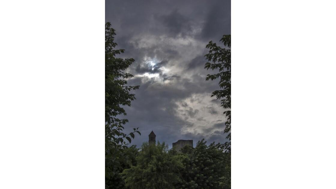 entre feuilles et nuages