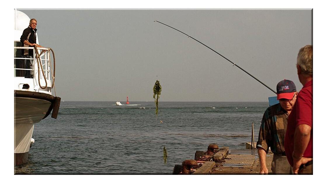 La pêche aux algues !!!