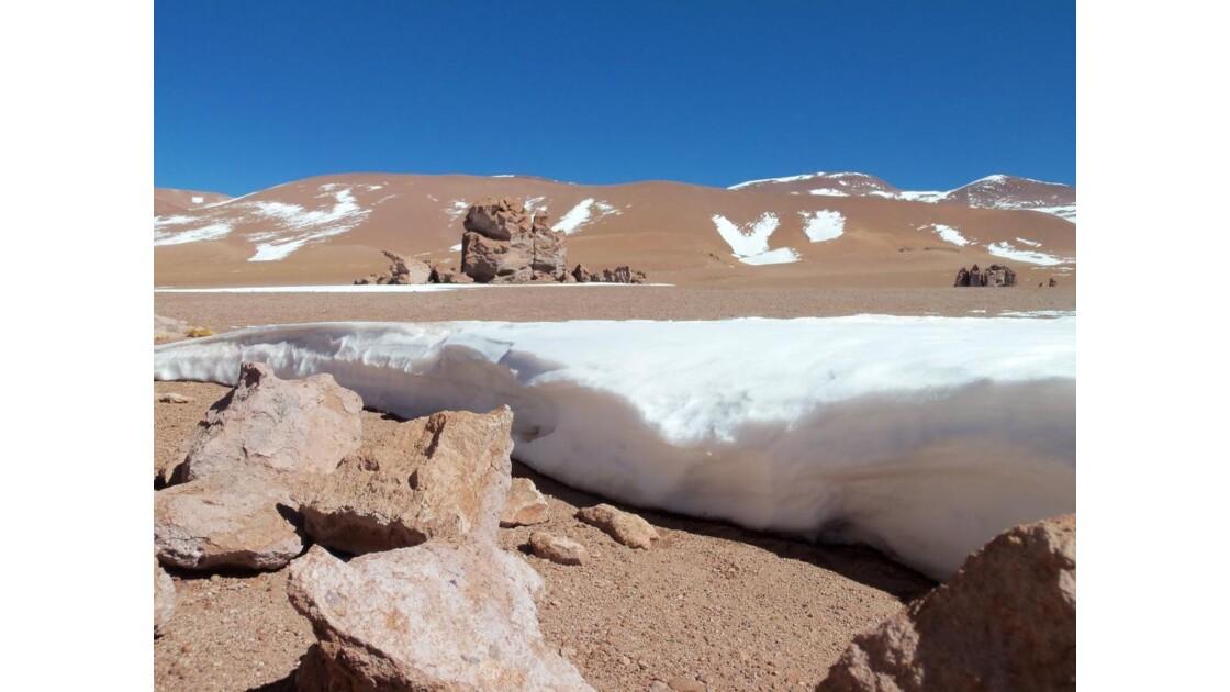 Tara, desierto de Atacama
