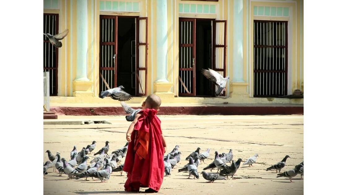Le moinillon et ses oiseaux