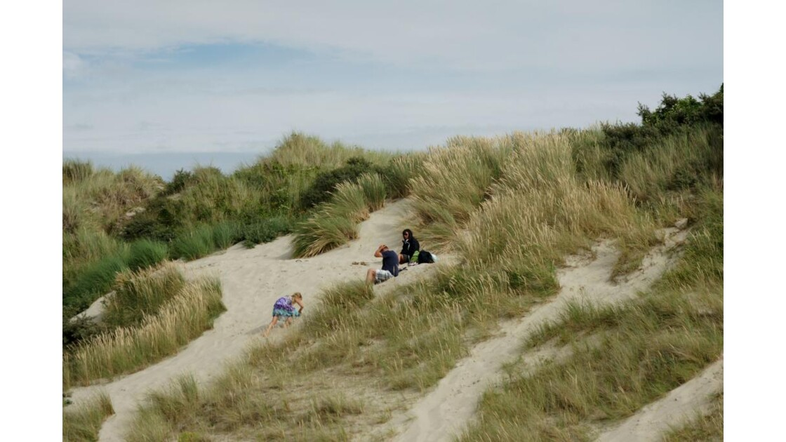 les dunes.