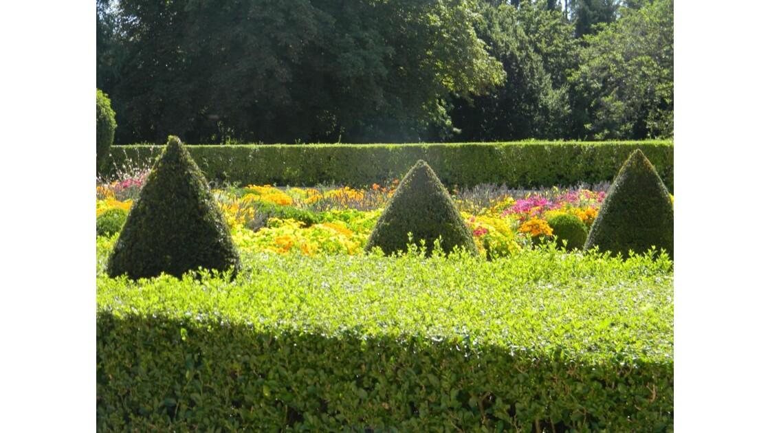 jardin_fleuri