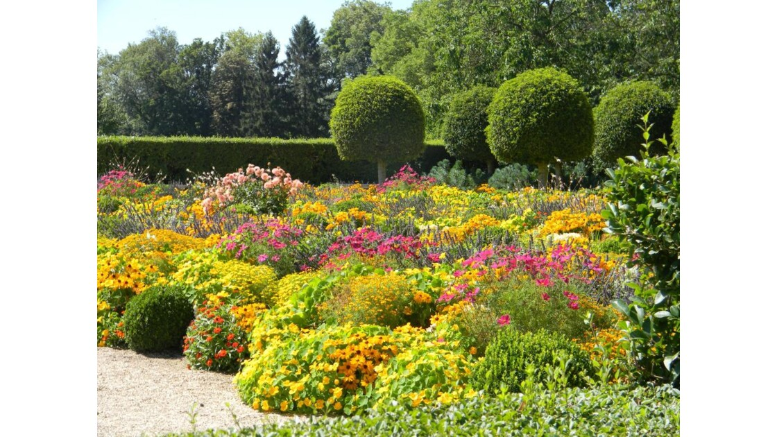 jardin fleuri 2