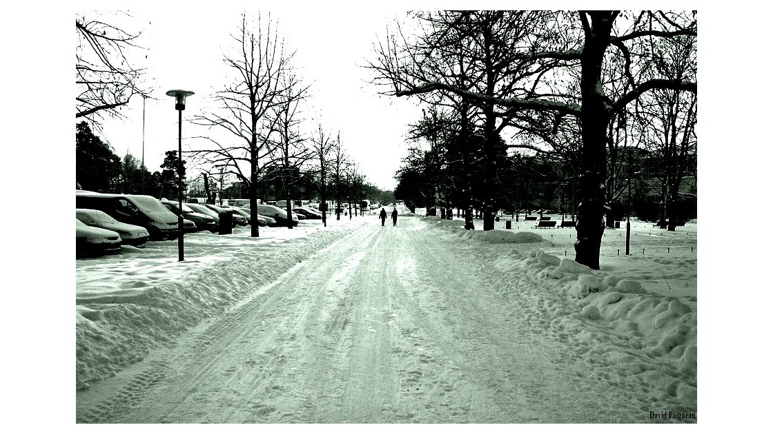 Promenade matinale, Helsinki, hiver 201