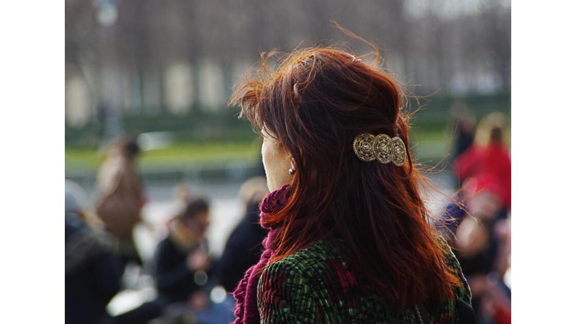 Cheveulure_de_braise.JPG