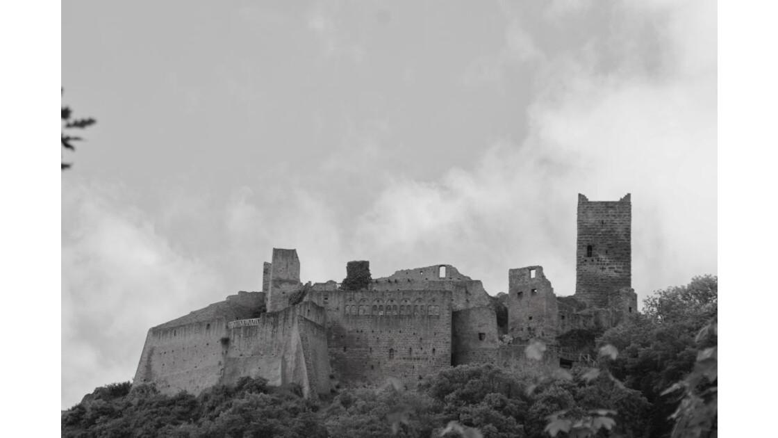 Chateau de ribeauville - Alsace