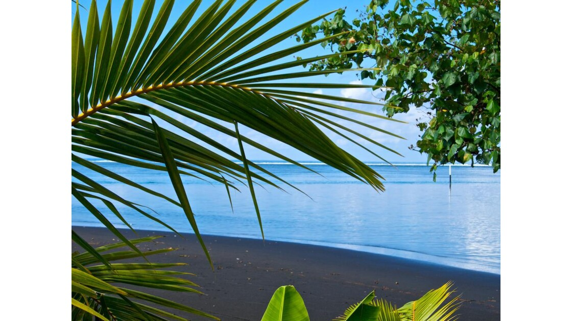Sable noir de Tahiti