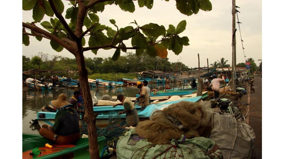Negombo, ville de pêcheurs