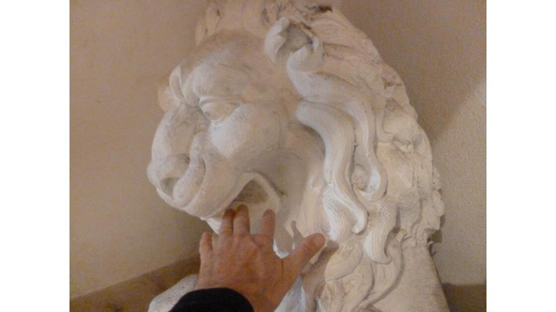 Lion_mangeur de Drozd.