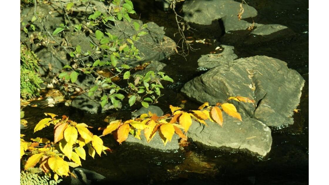 Laurentides, automne 2013-4