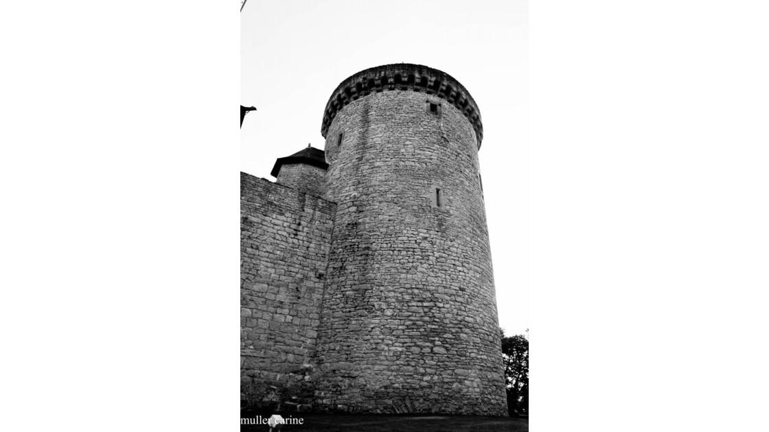 la tour du chateau de malbrouck