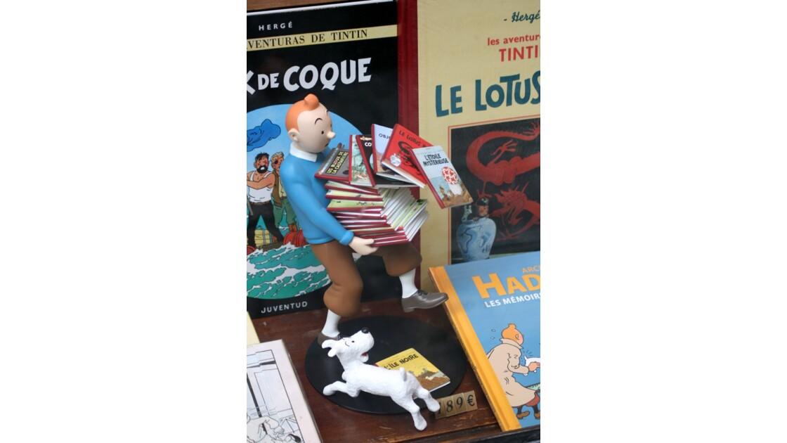 Maladroit le Tintin !!