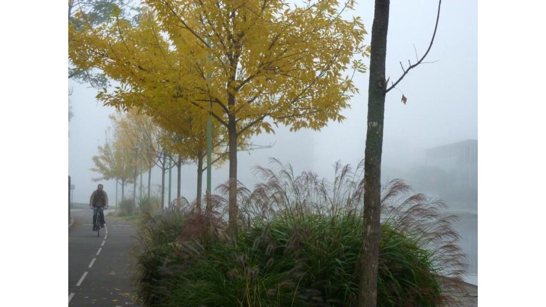 L'automne à Pantin.....