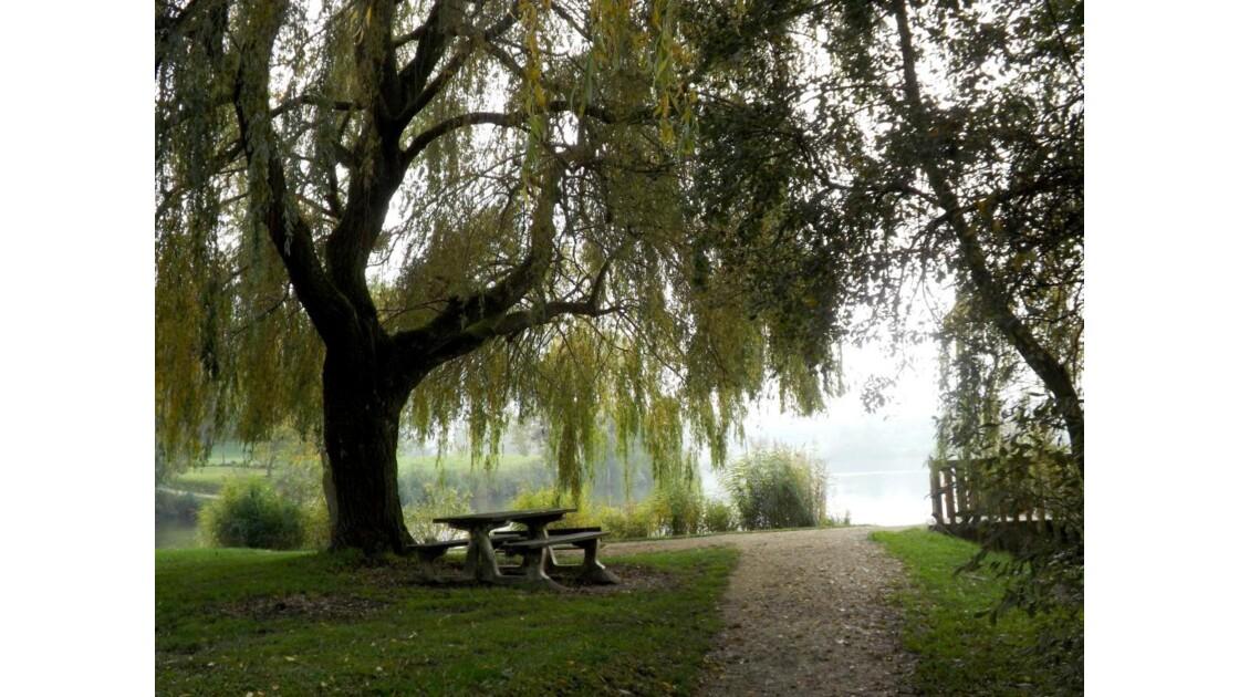 Le petit lac en automne