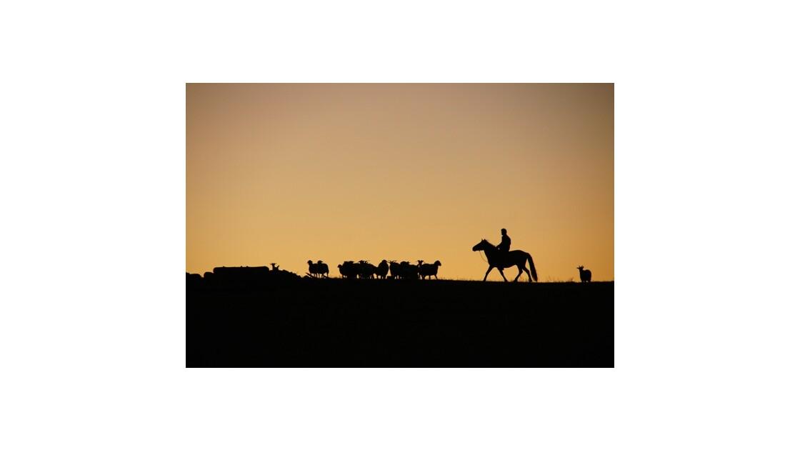 Vincent de Louvigny ombre mongole