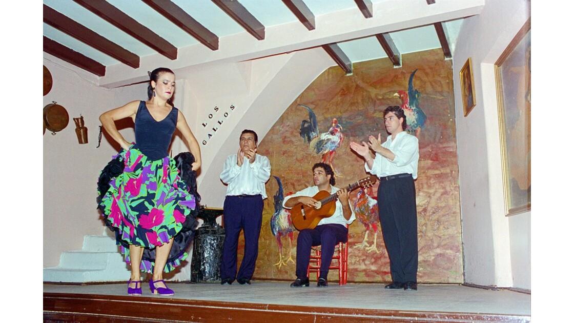Séville Soirée à Los Gallos 11