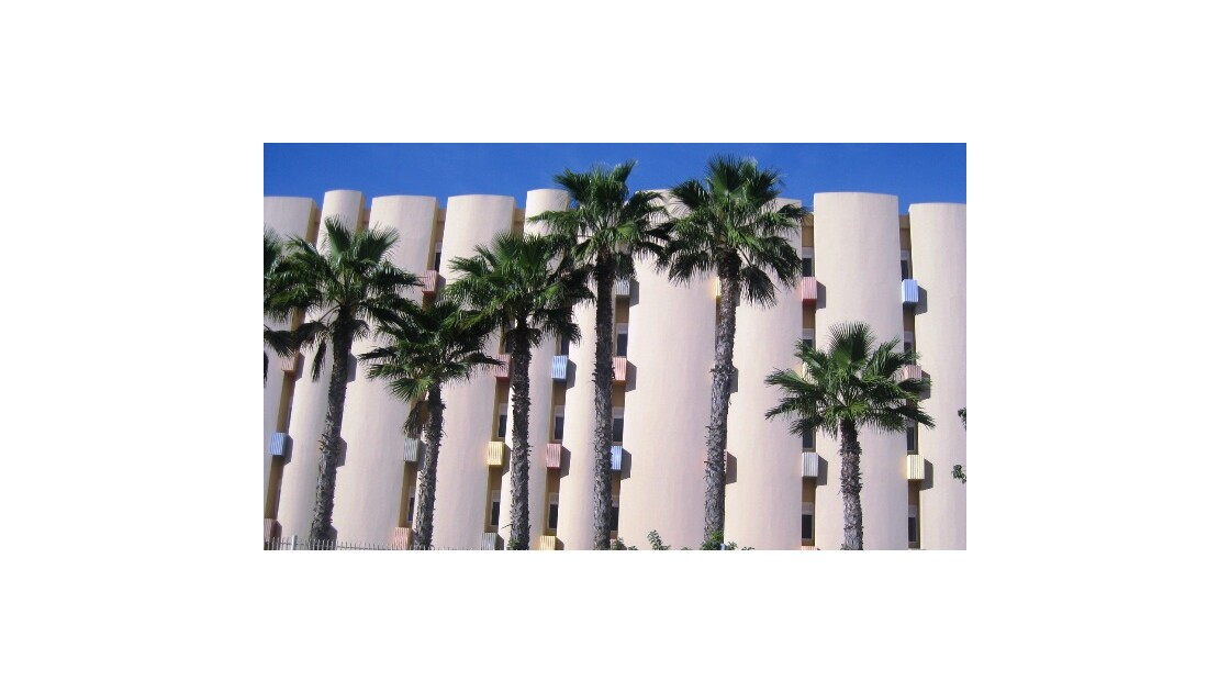 Gran Canaria béton et palmier.JPG