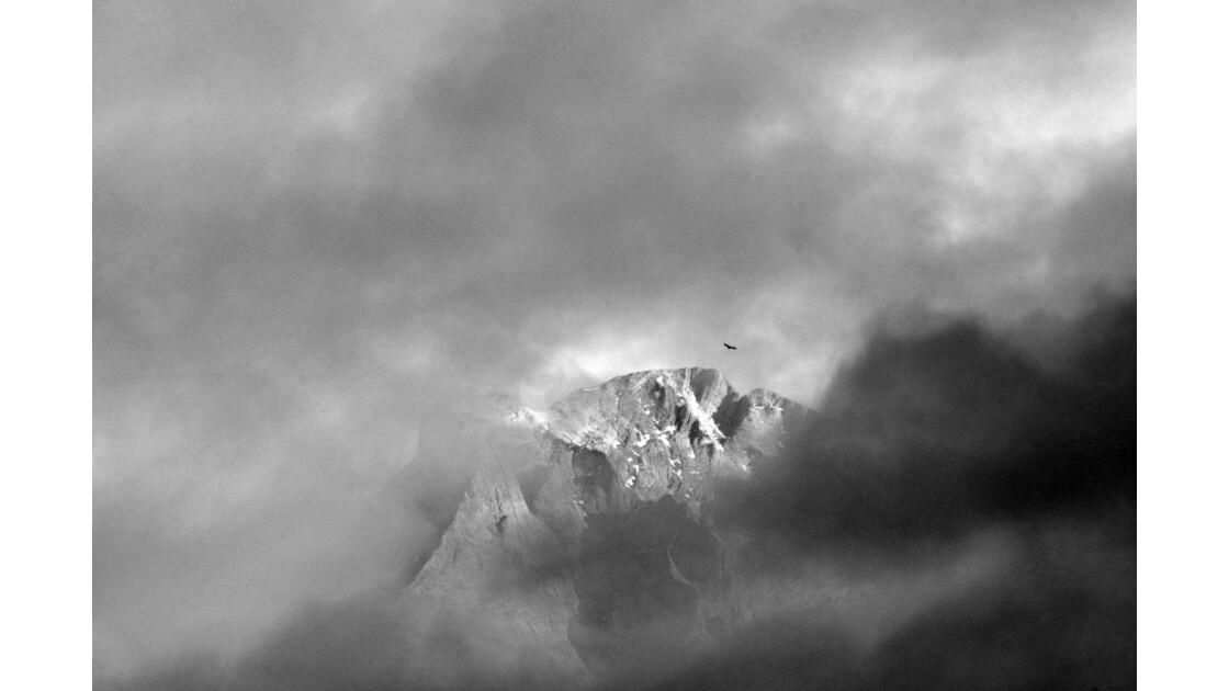 Pyrénées - 2013 11 07 (216)