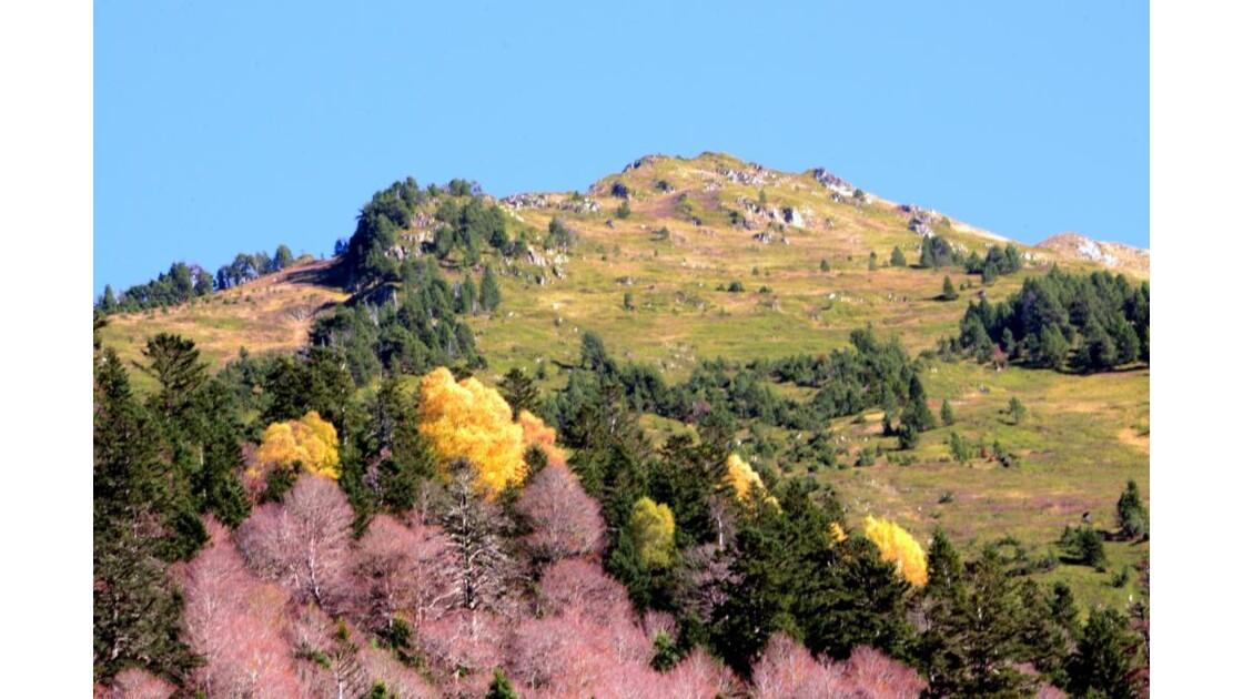 Pyrénées - 2013 11 07 (31)