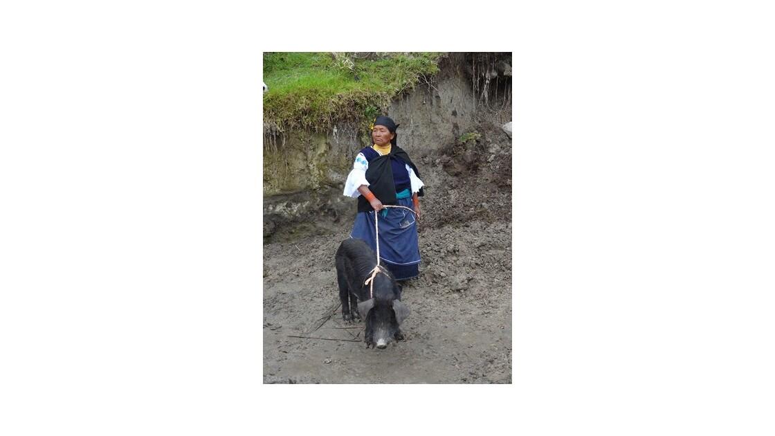 Equateur_Otavalo_Mercado_de_animales_4.