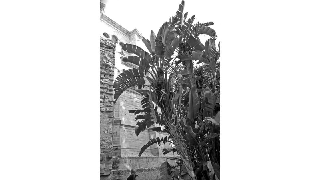 Malaga_16.jpg