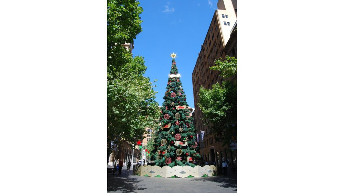 Christmas tree in the city