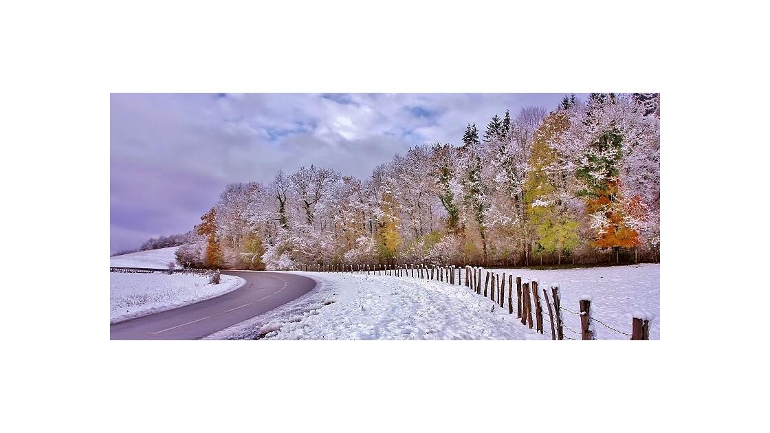 bordure d'hiver