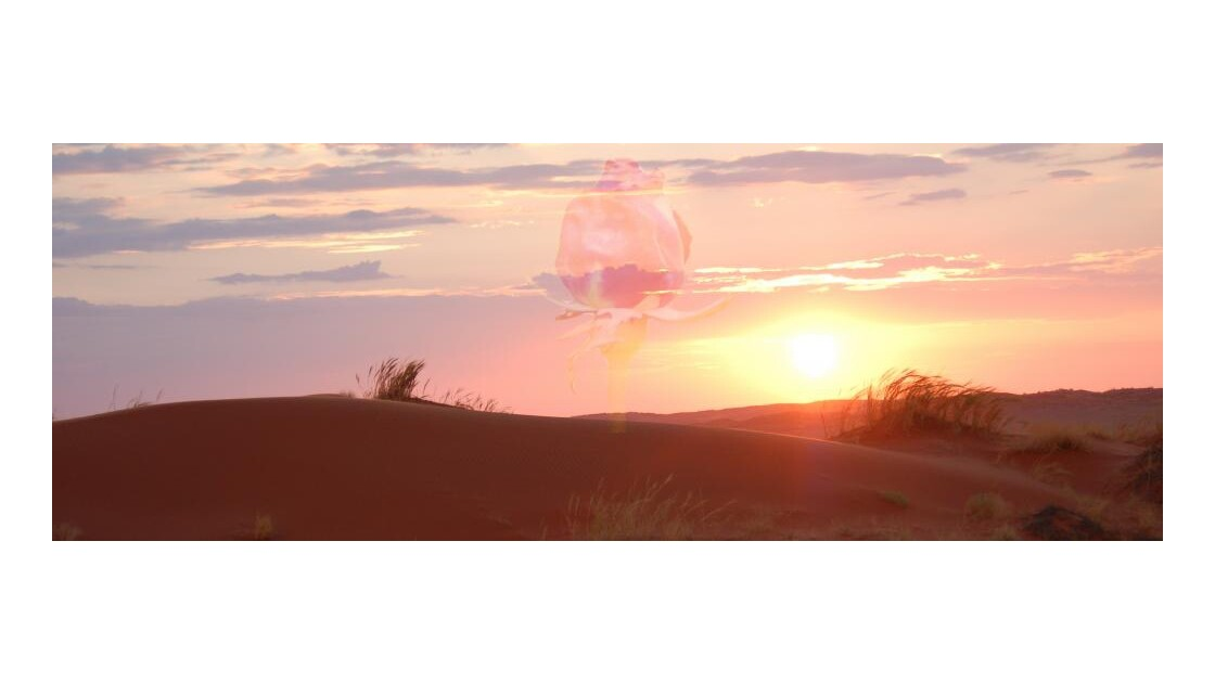 Dunes du Namib, mirage ...