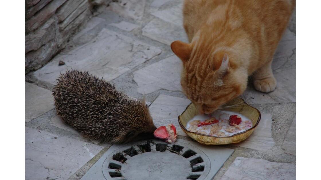 on partage ?