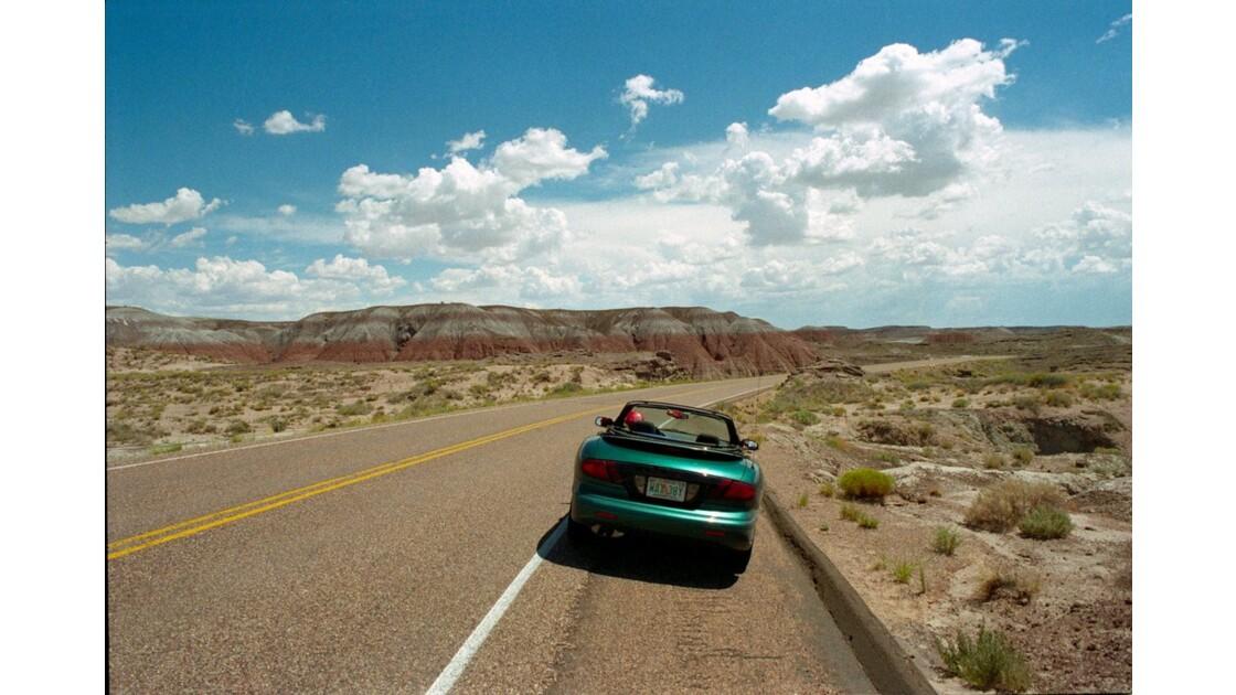 USA Painted Desert 1.JPG