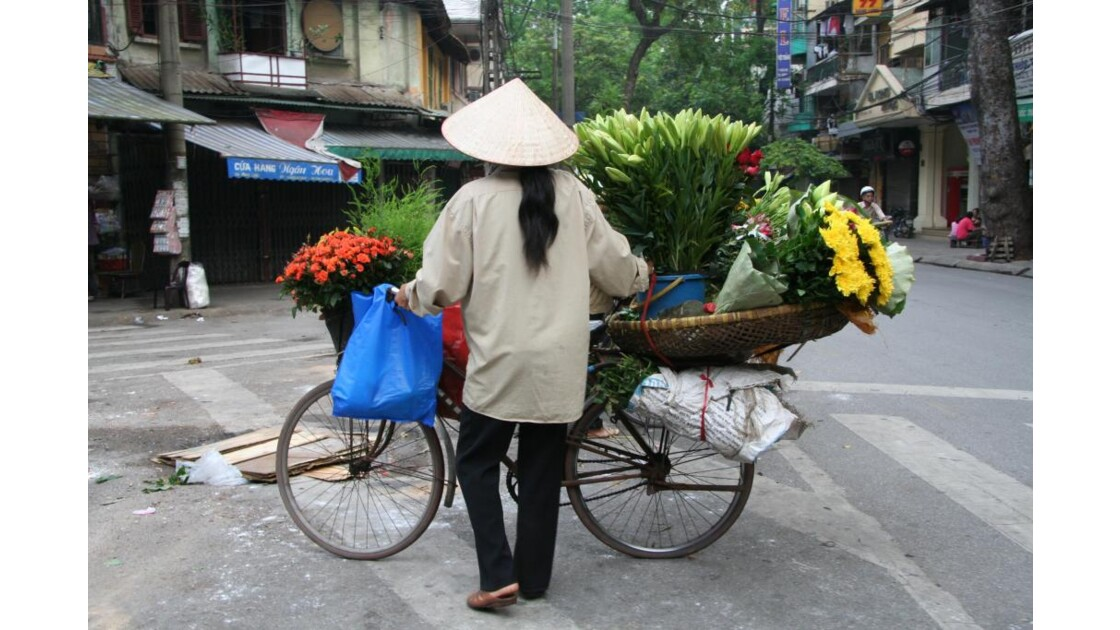 Femme fleur de hanoi
