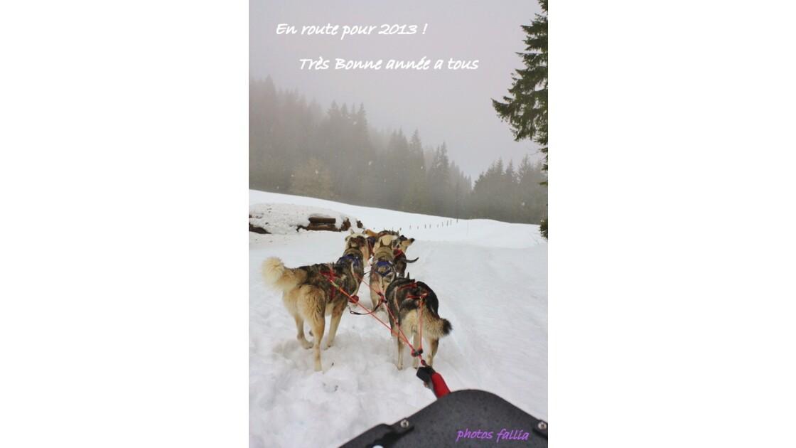 En avant pour 2013 !