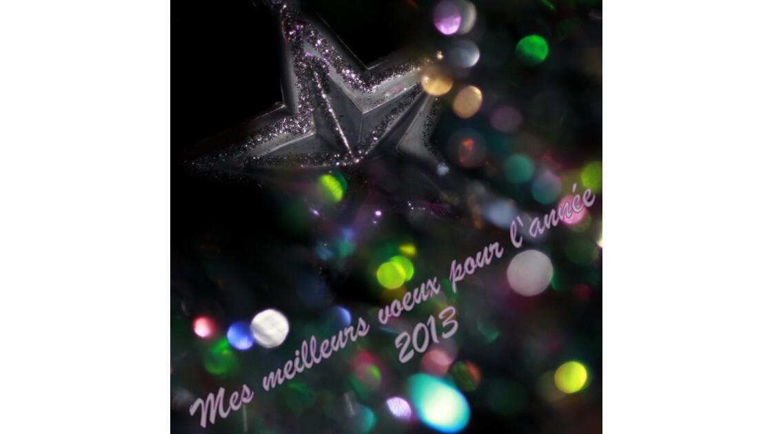 Mes meilleurs Voeux 2013