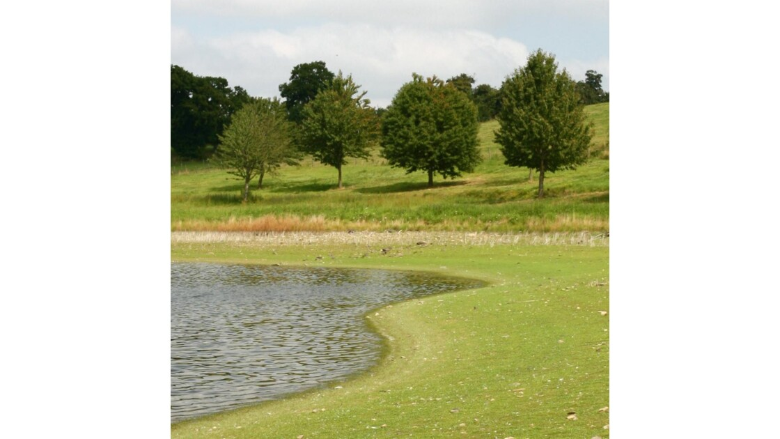 Au bord de l'étang (près Vitré - Bretag