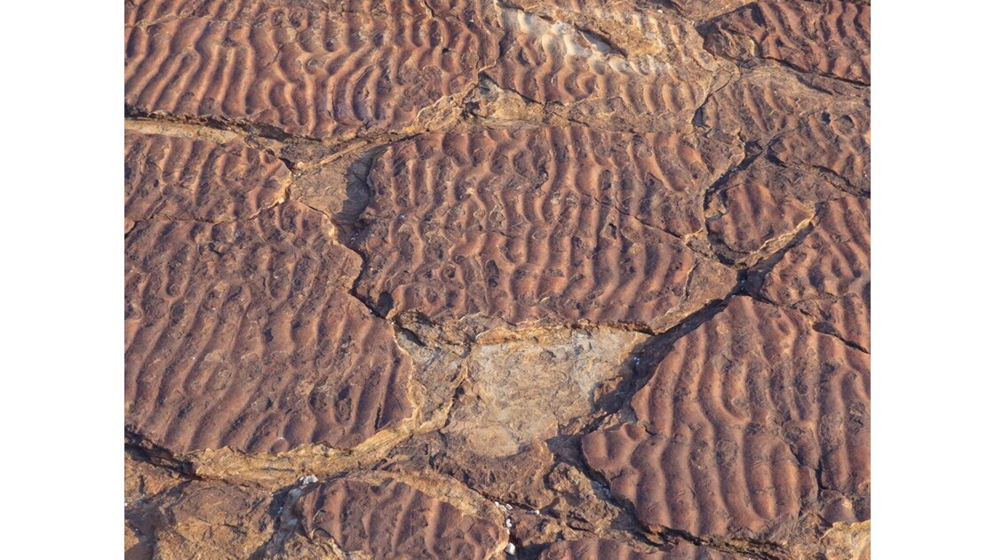 Australie___King_Canyon_Ripple_Marks_3.