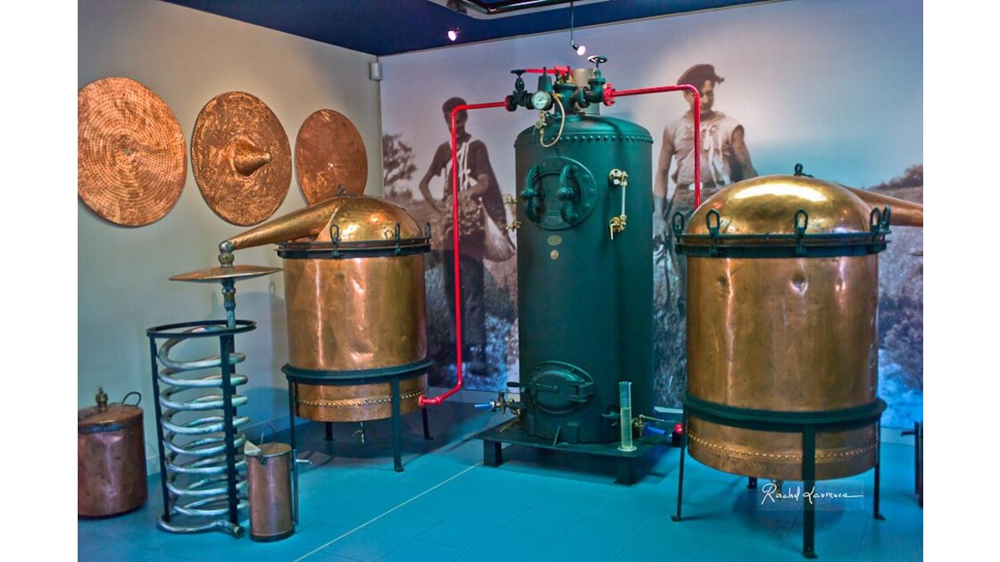 Alambic ancien : distillation de lavande