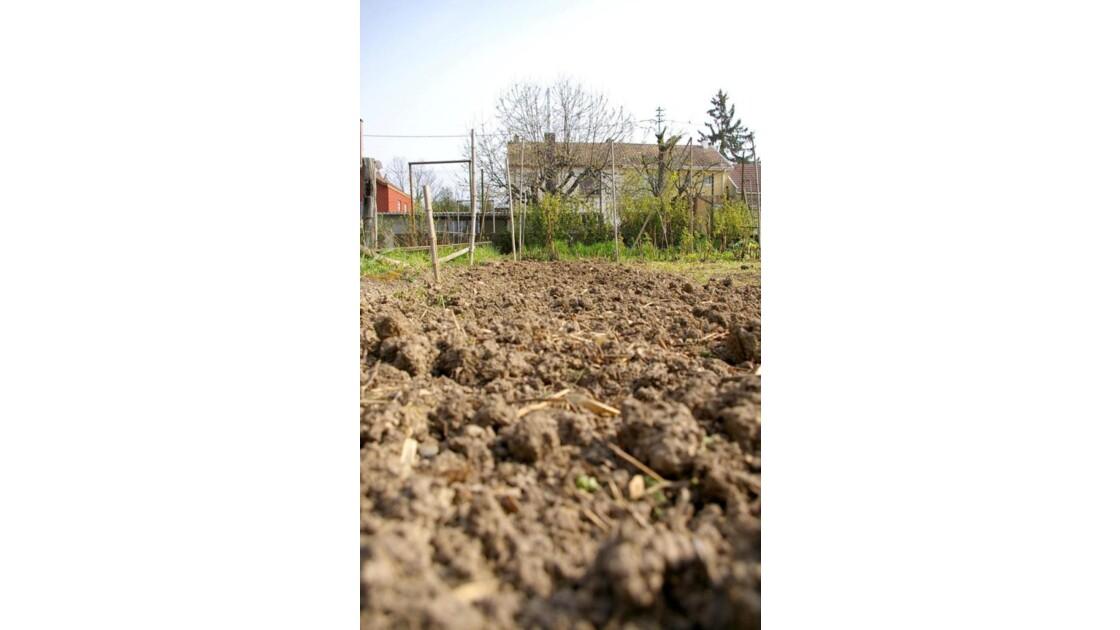 A ras le sol