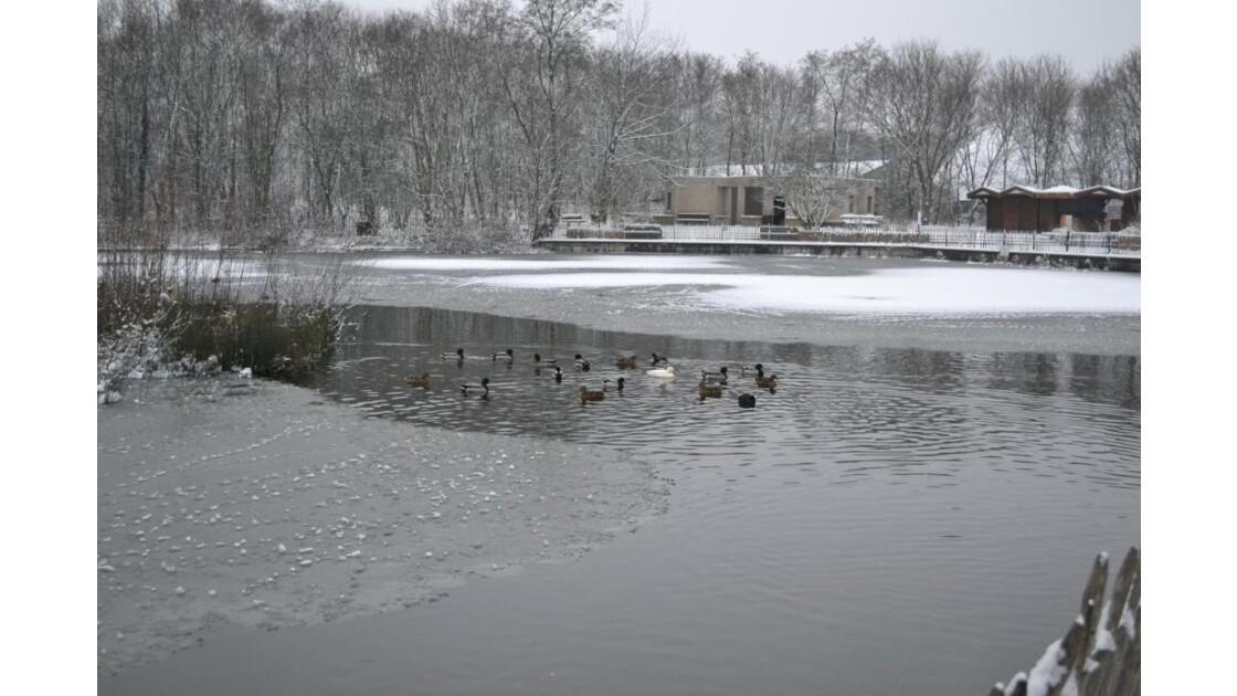 Lac_gel__du_parc.JPG