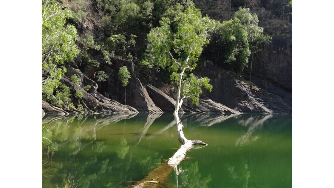 Australie Gunlom Waterhole 1.JPG