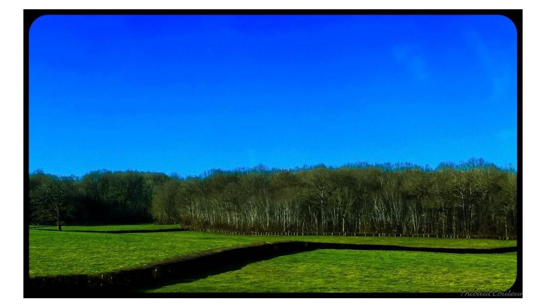 Histoire_de_haies_en_S___Loire.jpg