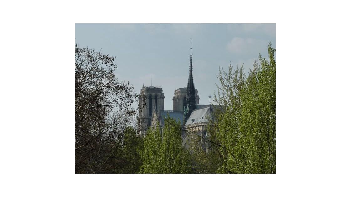 Notre_Dame__depuis_le_quai_de_la_Tourne