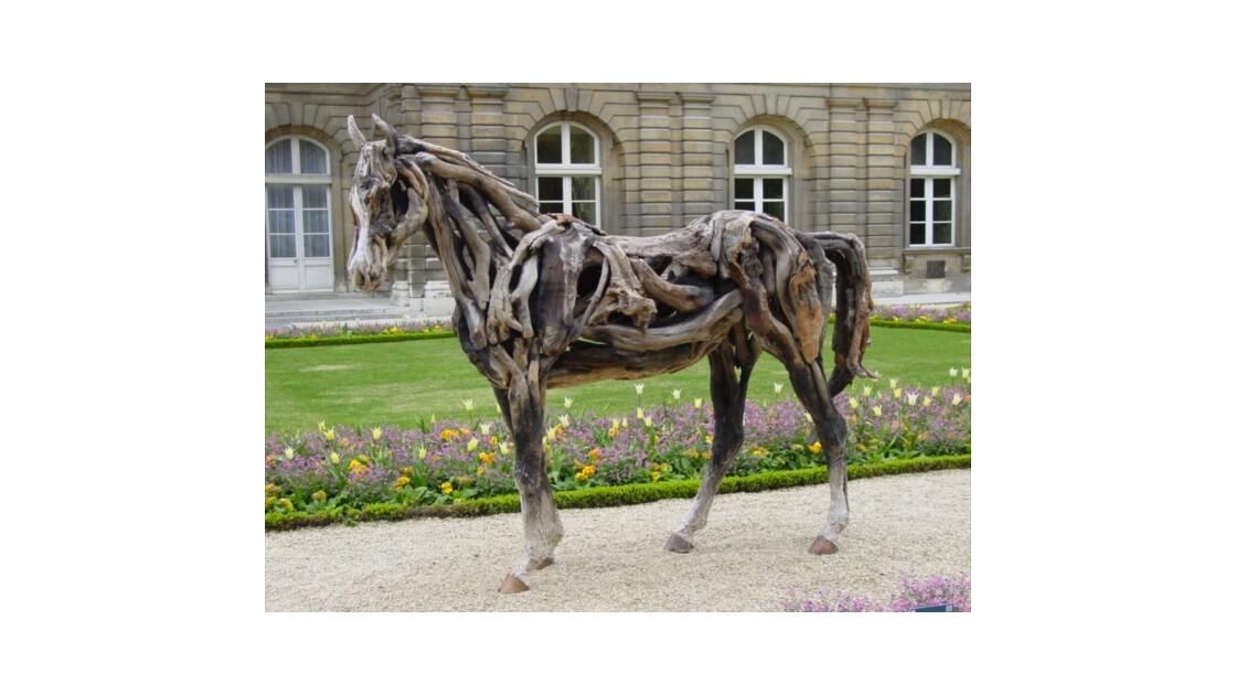 Anatomie du cheval de bois !