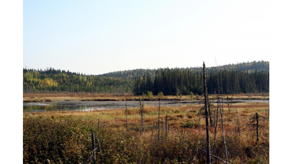 Route 169 nord , Septembre 2008