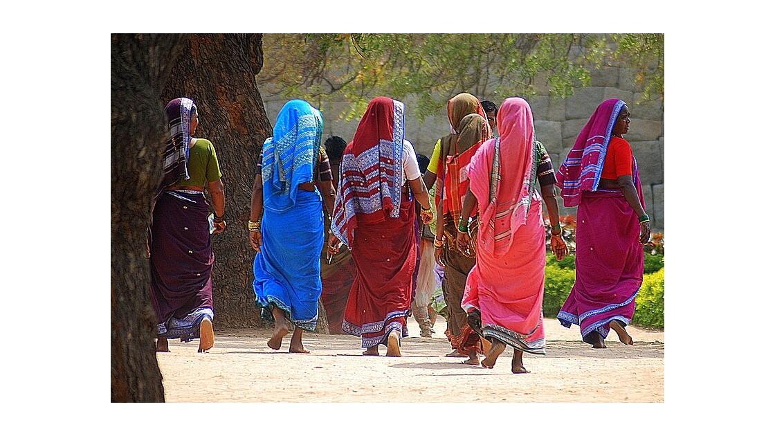 les saris