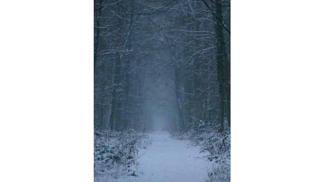 035. Il neige