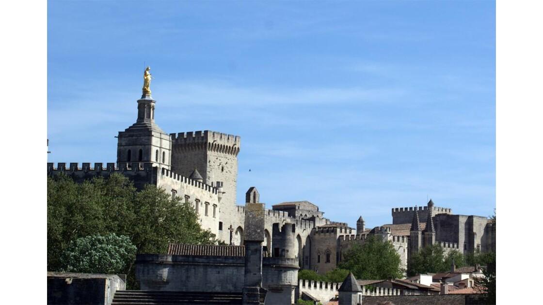 Palais des Papes vu du Pont St Bénézet