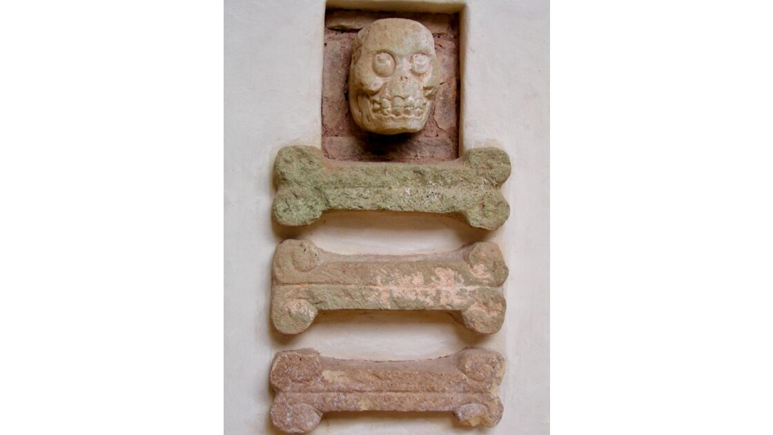 Musée: os humains et tête de mort